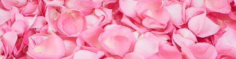 acqua di rose zaffiro organica